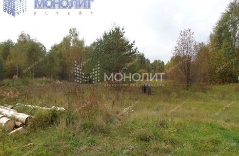 dom-derevnya-rakovo-gorodskoy-okrug-chkalovsk фото