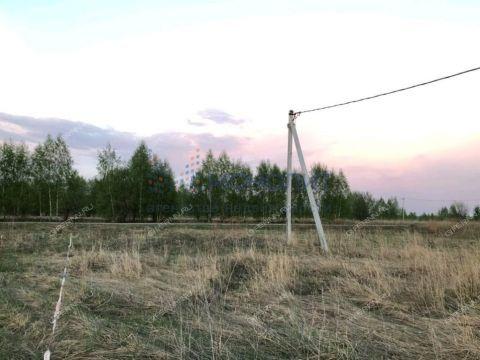 derevnya-krivaya-sheloksha-kstovskiy-rayon фото