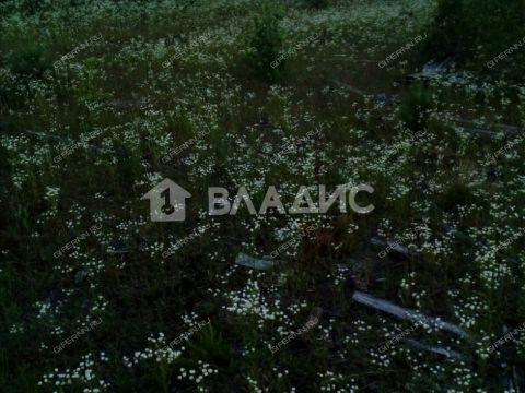 poselok-poshatovo-arzamasskiy-rayon фото