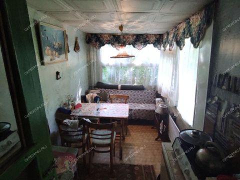dom-derevnya-cheremisskoe-kstovskiy-rayon фото
