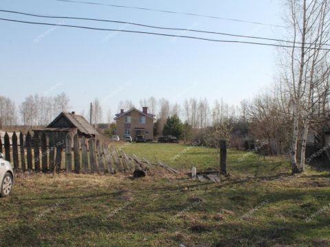 derevnya-fedurino-gorodeckiy-rayon фото