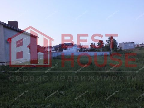 derevnya-berezovka-arzamasskiy-rayon фото