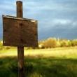 Юридические тонкости покупки земли в коттеджном поселке